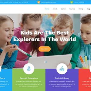 Standard Website Package
